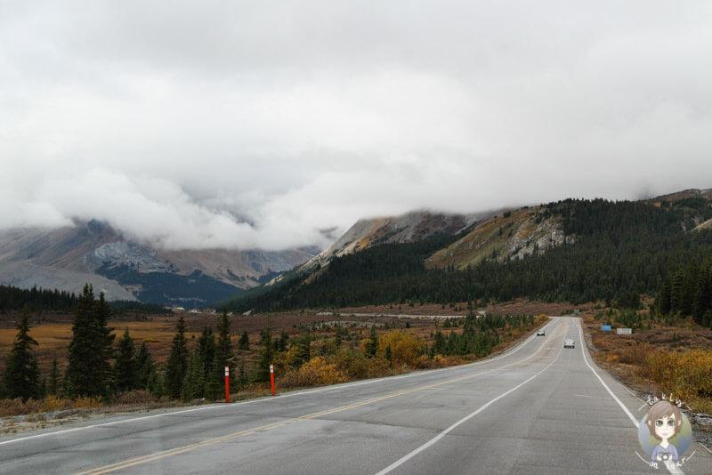 Die letzte Strecke Richtung Columbia Icefield Center, Icefields Parkway, Kanada