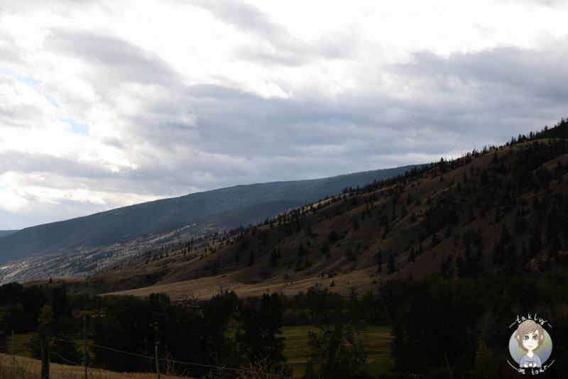 Die Landschaft entland des Highway 97 Richtung Lillooet, BC, Kanada