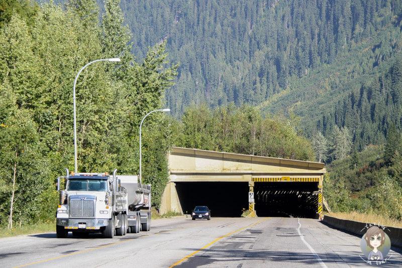 Überall am Rogers Pass gibt es Lawinenschutzwände