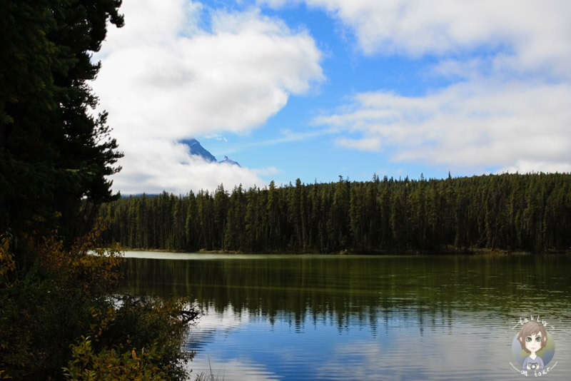 Der Leach Lake in Jasper, Kanada