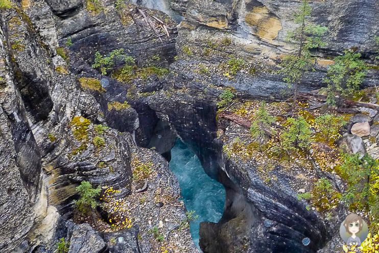 Mistaya Canyon, Alberta, Kanada