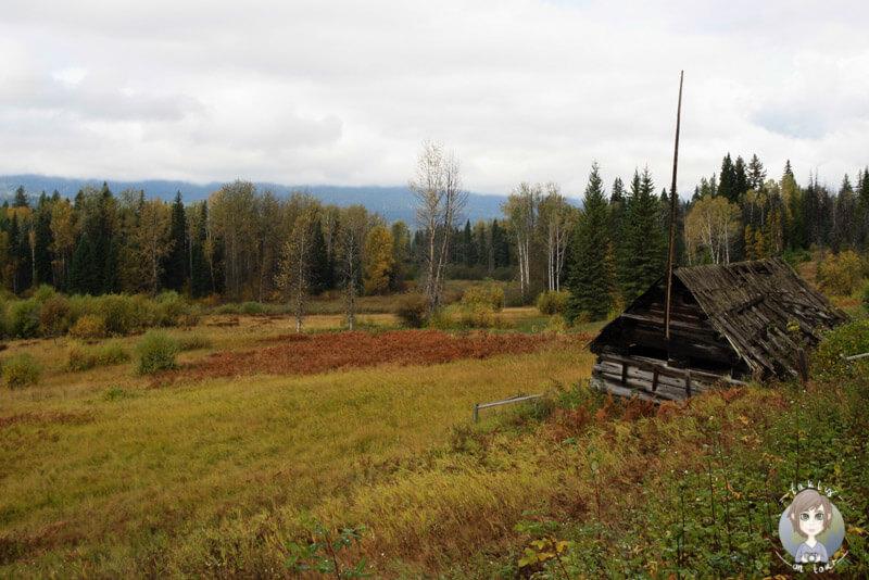 Rays Farm, Wells Gray Provincial Park, Kanada