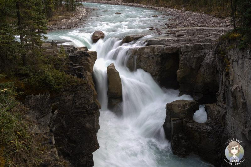 Die Sunwapta Falls am Icefields Parkway