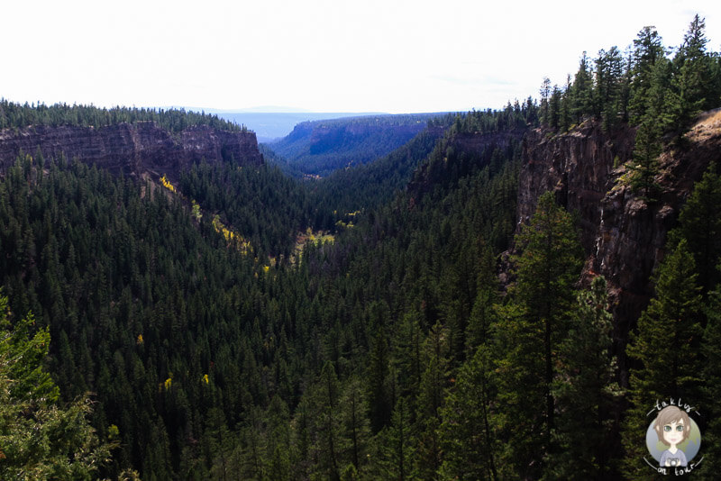 Der tolle Chasm Canyon , BC, Kanada