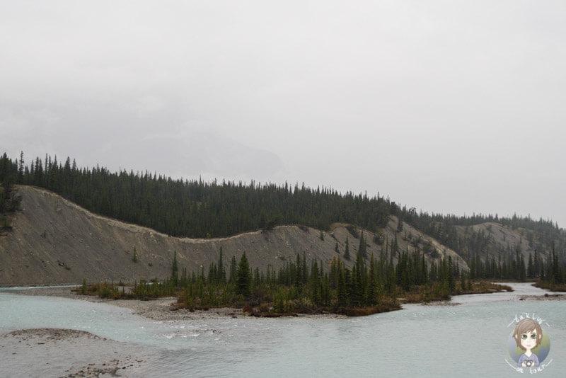 Der beeindruckende North Saskatchewan River, Alberta, Kanada