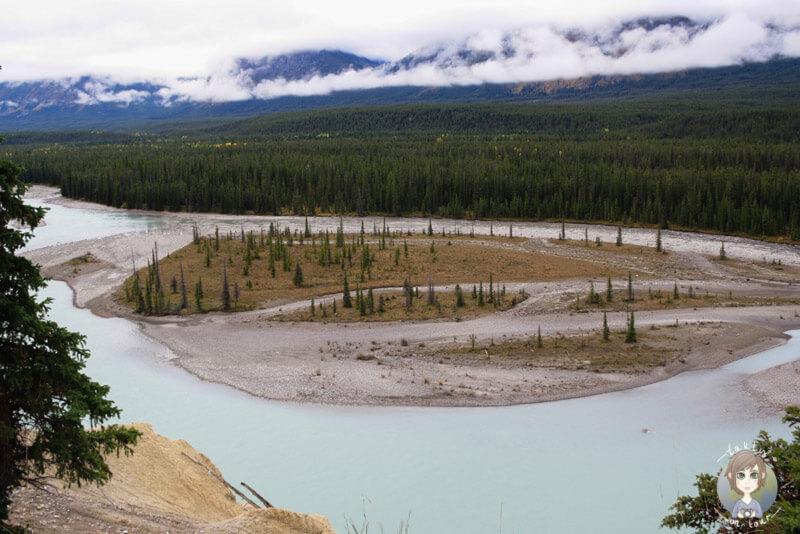 Ein Viewpoint auf dem Icefields Parkway, Alberta, Kanada