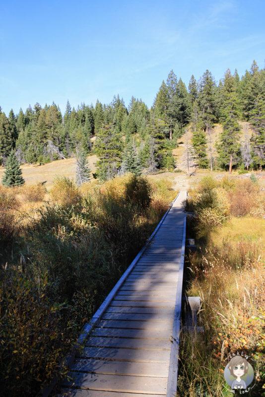 Start der Wanderung Valley of the five Lakes im Jasper National Park, Kanada