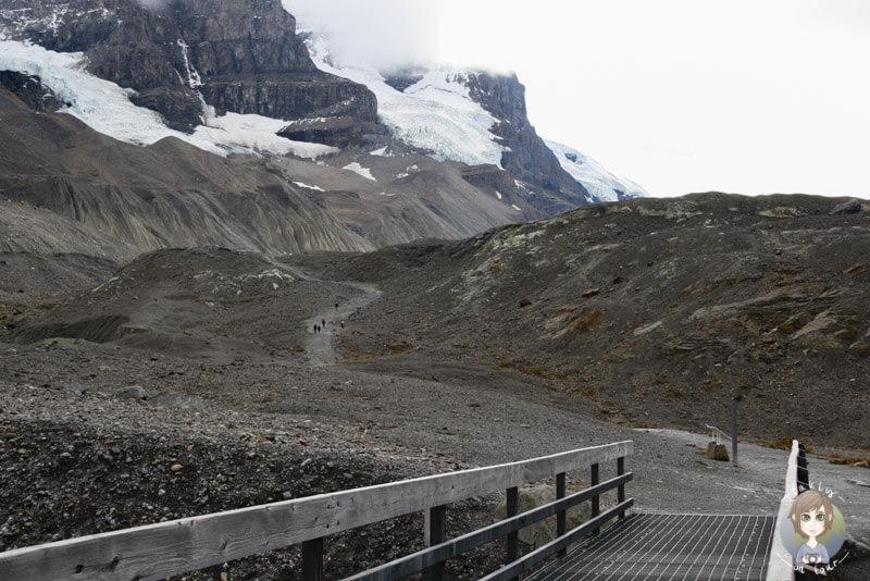 Wanderung zum Athabasca-Gletscher, Icefields Parkway, Kanada