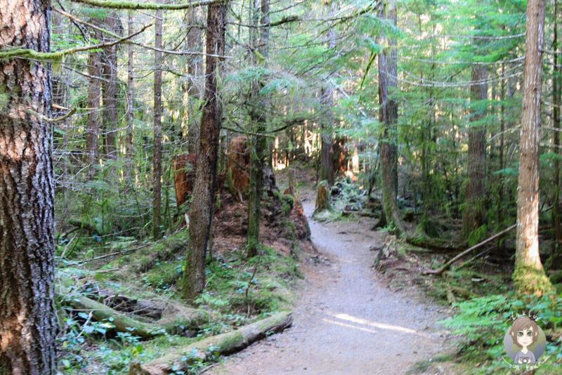 Wanderung zum Stump Lake, BC, Kanada