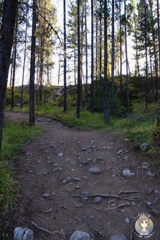 Der Wanderweg vom Valley of the Five Lakes, Kanada