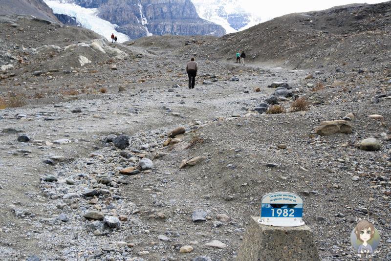 Wanderweg zum Athabasca-Gletscher, Alberta, Kanada