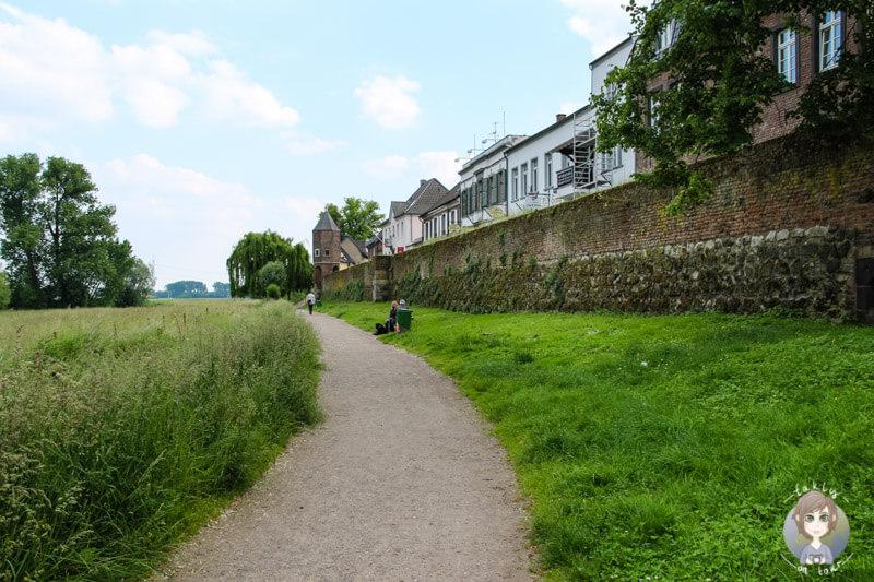Ausflug im Rheinland, Perfekt für einen Sonntagsspaziergang in Zons am Rhein