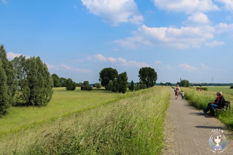 Wunderschöner Spazier- oder Fahrradweg über den Deich in Zons am Rhein
