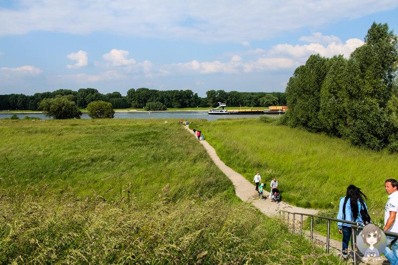 Über den Deich in Zons geht es direkt zum Rhein
