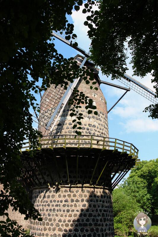 Die Mühle von Zons