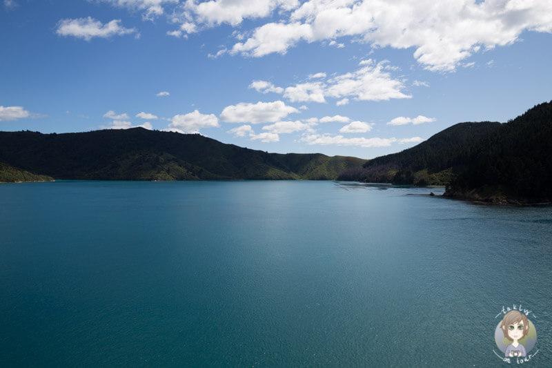 Die Südinsel von Neuseeland hat uns jetzt schon in den Bann gezogen