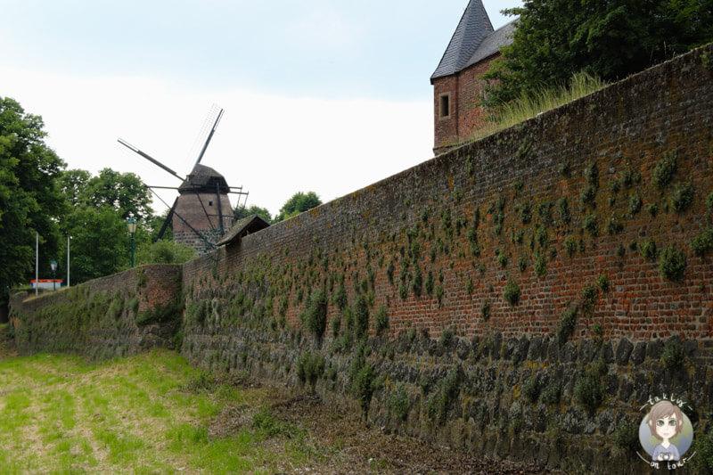Die Stadtmauer und Mühle in Zons am Rhein
