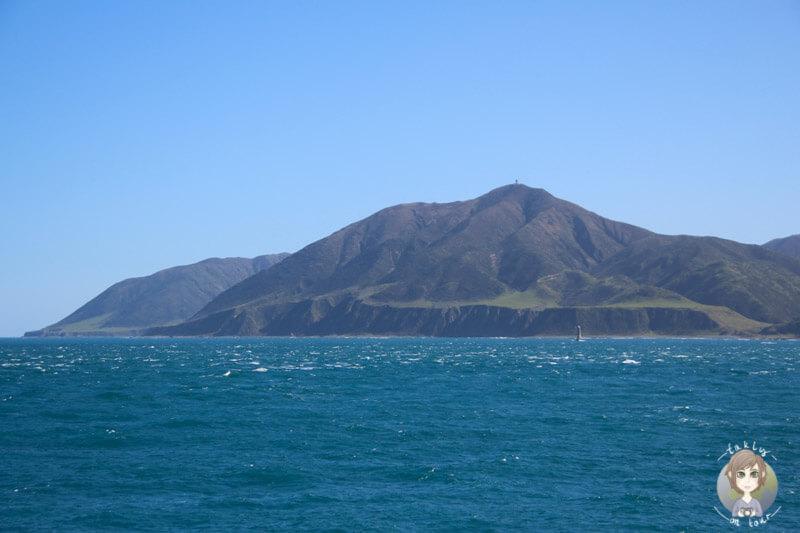 Die grünen Hügel der Nordinsel von Neuseeland