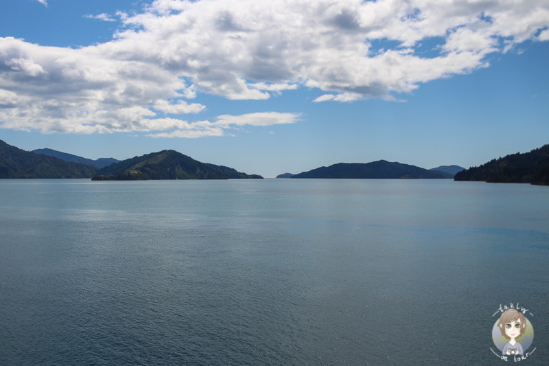 Ein toller Ausblick auf der Faehrfahrt in Neuseeland auf der Interislander