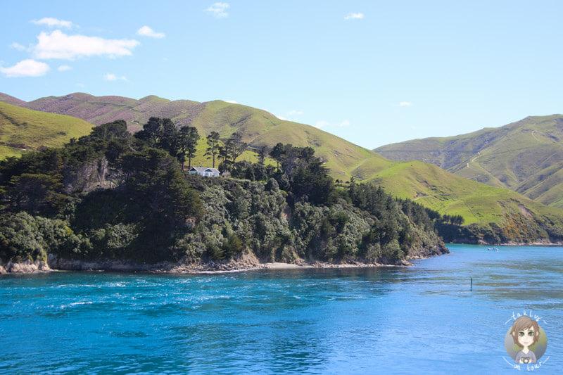 Einsame Grundstücke auf den Inseln vor der Südinsel von Neuseeland