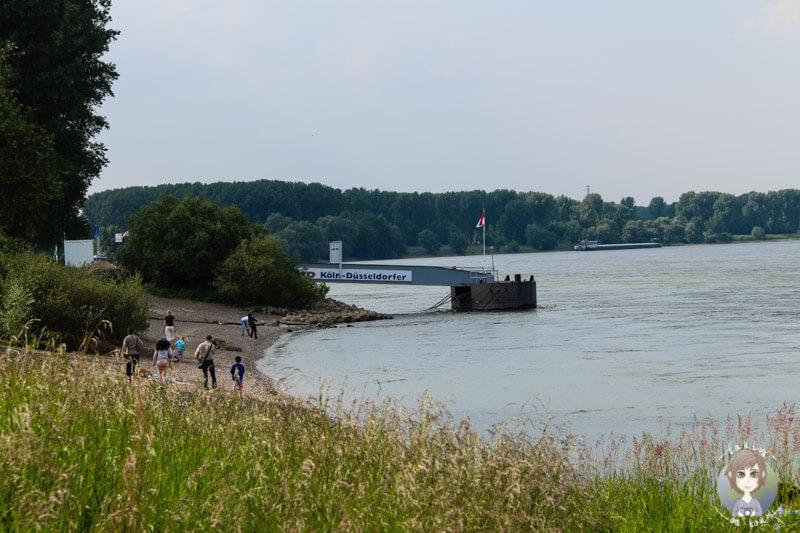 Schiffsanlegestelle der KD in Zons am Rhein