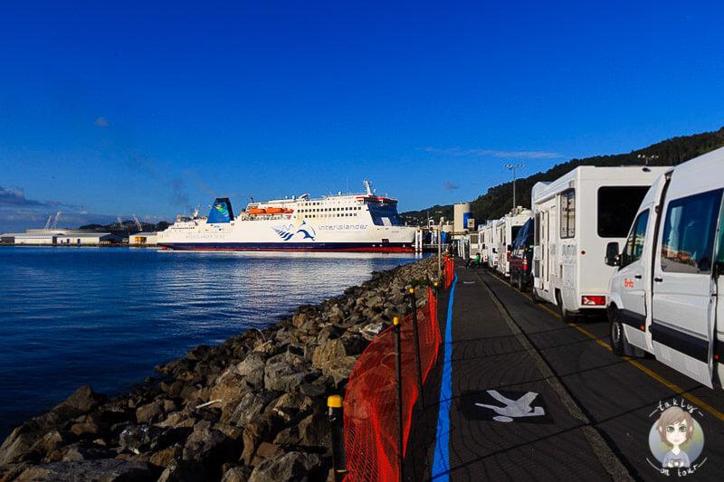 Autoschlange vor der Interislander Faehre in Neuseeland