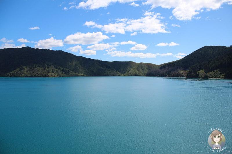 Zauberhafte Landschaft auf der Cook Strait Ferry in New Zealand