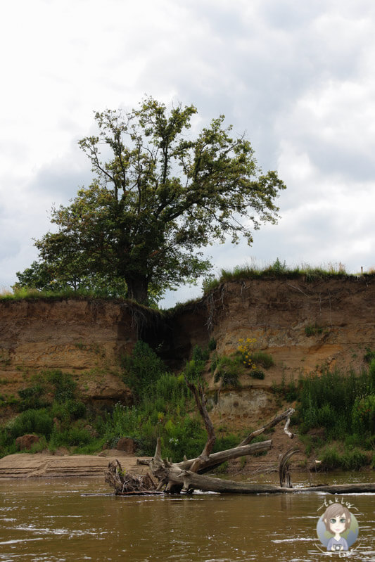Naturschauspiel in der Auvergne