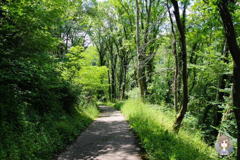 Ein schöner Wanderweg zum Gorges de la Bouble, Chantelle