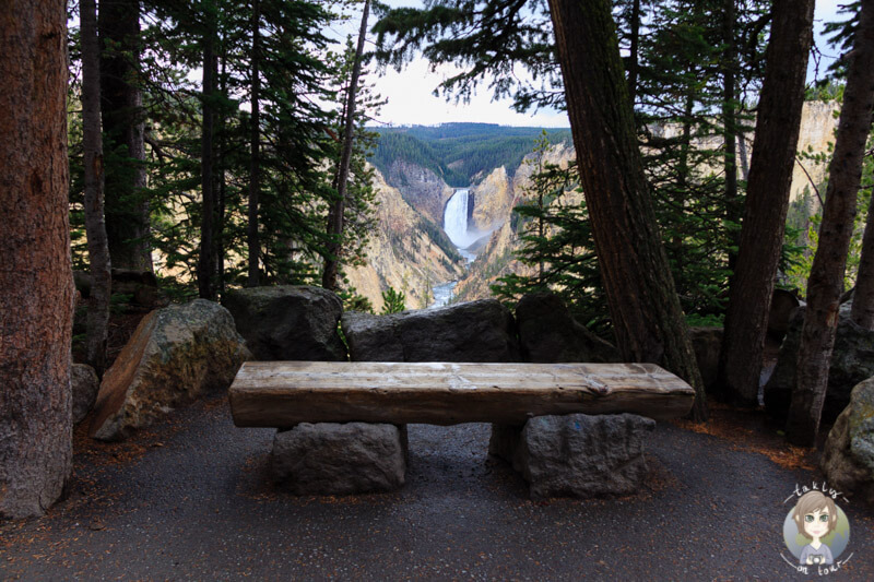 Blick am Artist Point auf die Yellowstone Lower Falls, Yellowstone National Park