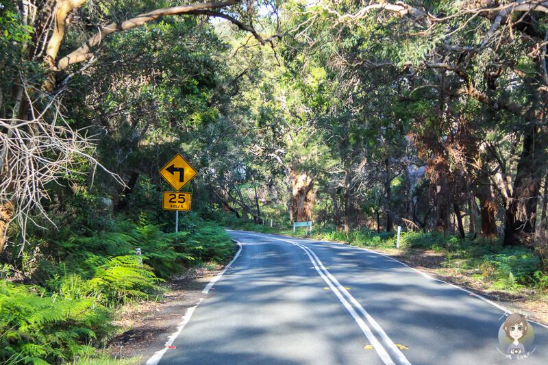 Fahrt Richtung Sydney, NSW