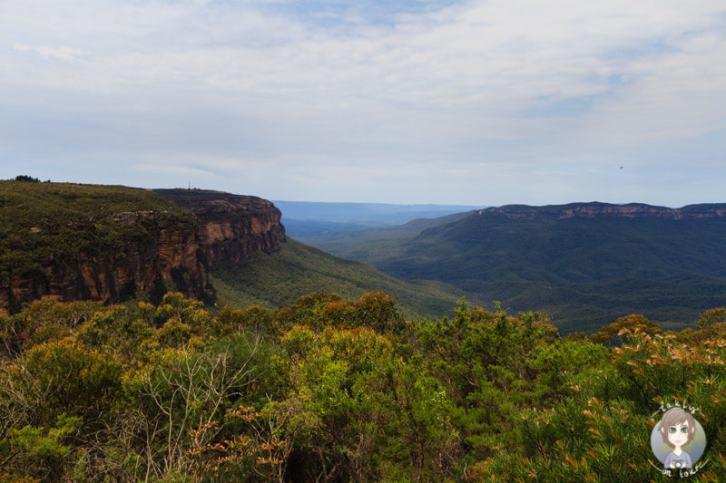 Jamison Lookout, Blue Mountain National Park, NSW, Australien