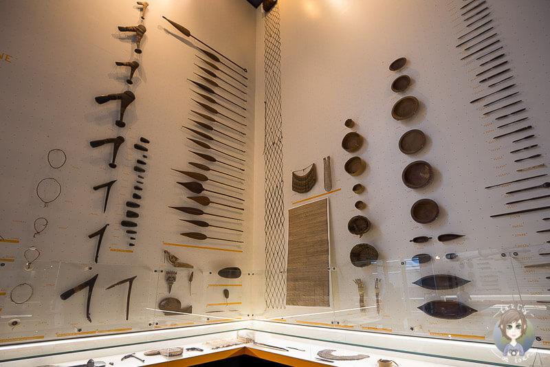 Vitrinen mit Waffen und Speeren im Rautenstrauch-Joest Museum
