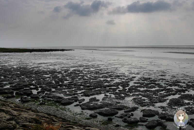 das-watt-in-der-nordsee