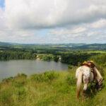 Auf dem Rücken der Pferde durch die Auvergne