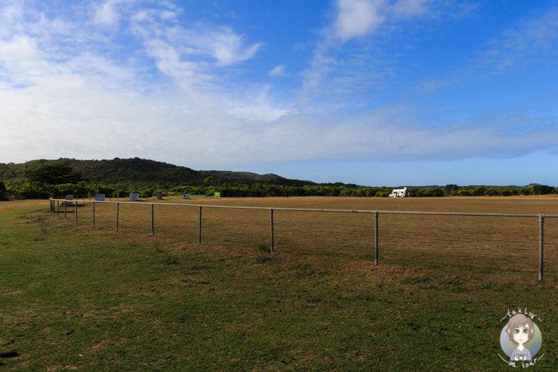 Weitläufiger Campingplatz in Princetown