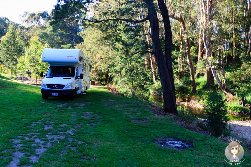 Die Franklin River Rest Area in Toora