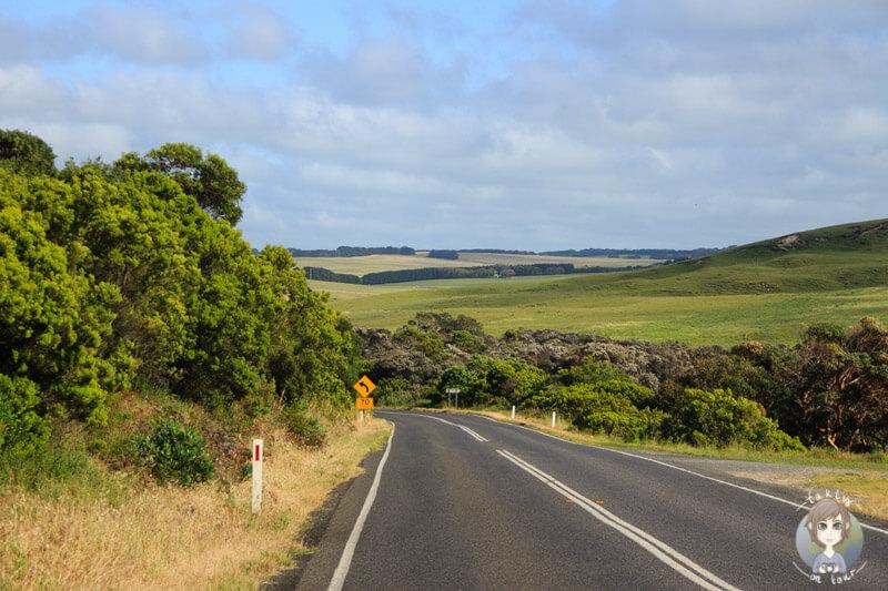 Vorbildliches Wetter auf unserem Roadtrip über die Great Ocean Road, Australien