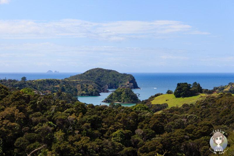 Aussichtspunkt an der Ostküste Northland, Neuseeland