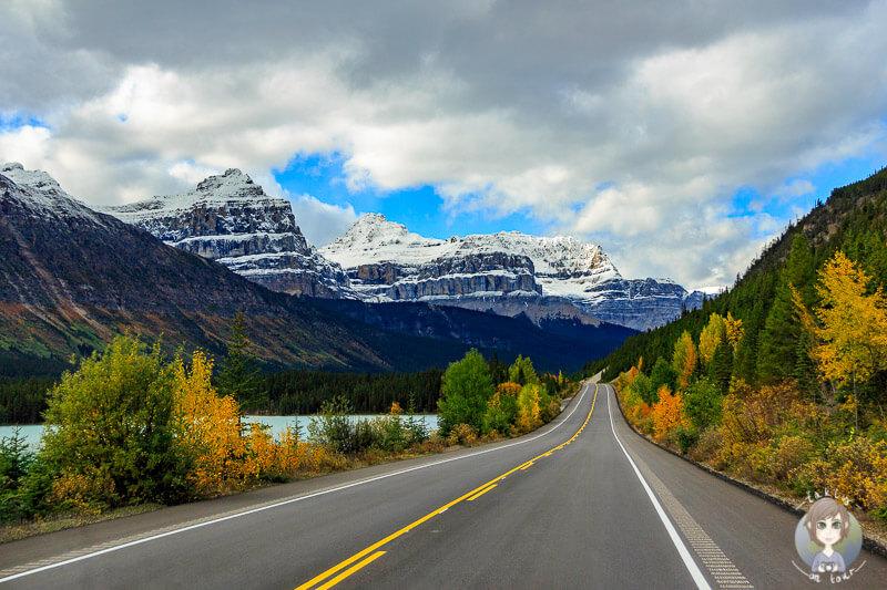 Herbst auf dem Icefields Parkway in Alberta, Kanada - Roadtrip durch Kanadas Westen