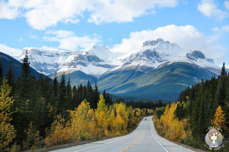 icefields-parkway-kanada-takly-on-tour