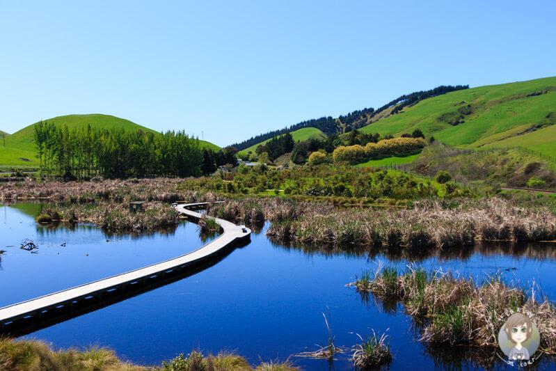 Pekapeka Wetlands, Hawkes Bay, Neuseeland