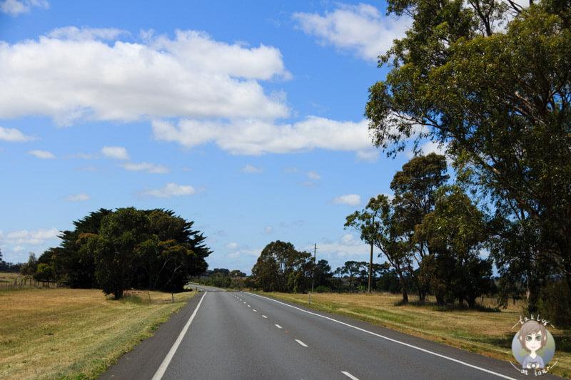 Fahrt über den Princess Highway Richtung Geelong