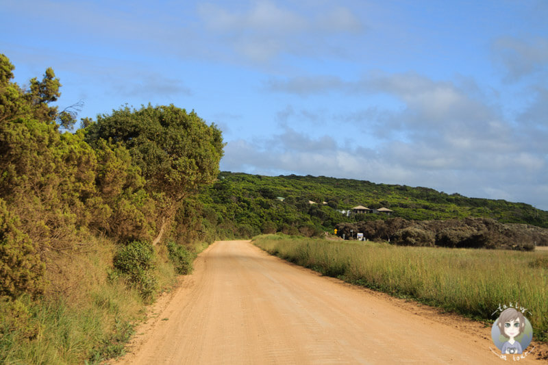 Fahrt vom Campingplatz Richtung Great Ocean Road, Australien