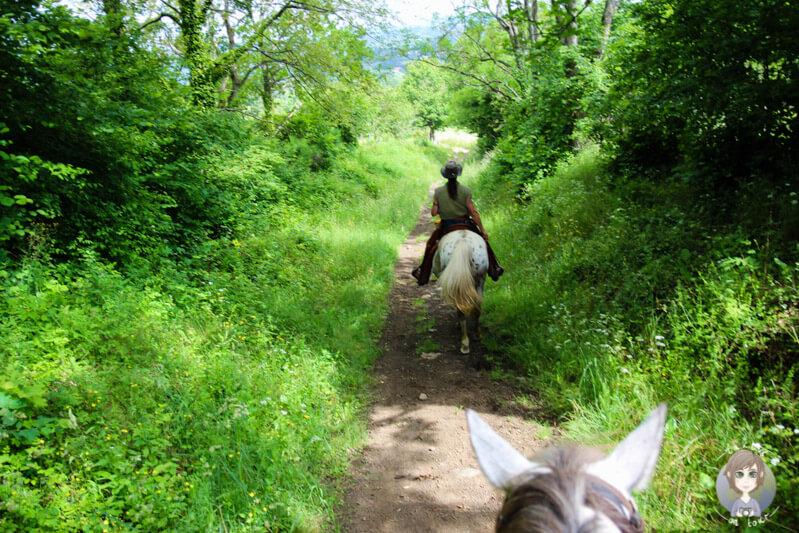Auf einem Ausritt in der Auvergne, Frankreich