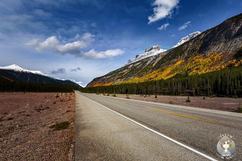 Der Icefields Parkway einer unserer Tipps für einen Roadtrip durch Kanadas Westen