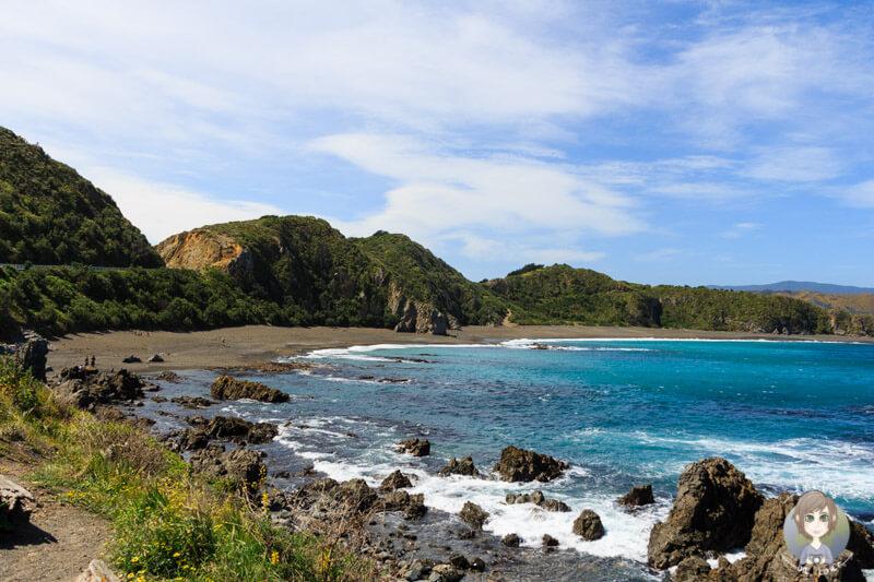 Blick auf die Tarakena Bay in Wellington, Neuseeland