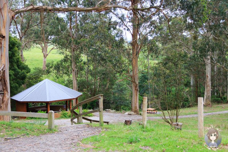 Carpark der Agnes Falls, Hazel Park, Toora, Victoria, Australien