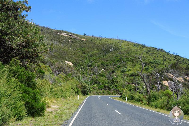 Fahrt durch den Wilsons Promontory Nationalpark, Vic, Australien