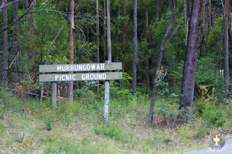 Murrungowar Picnic Ground, Victoria